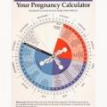 YOUR PREGNANCY CALCULATOR